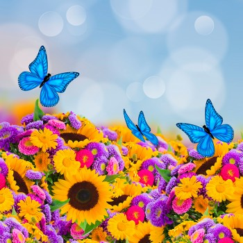 Яркий букет с бабочками