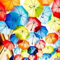 Небесные зонтики